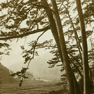 Asia and the Eastern Pacific Rim in Early Prints and Photographs